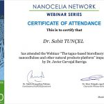 Nanocelia Network Certificate